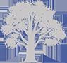 logo Tuinen Stany Demarez BVBA